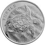 turtle-reverse