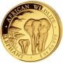 gold-elephant-obverse