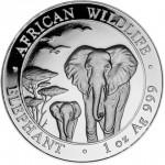 Somalian Silver Elephant Obverse