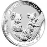 1_11-Koala-Reverse