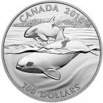 2013-canadian-silver-orca-rev