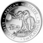 2016-1-oz-platinum-somalian-elephant-obv