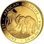2017-1-4-oz-somalian-gold-elephant-obv