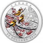 2015-1-oz-proof-canadian-silver-weather-phenomenon-winter-freeze-rev