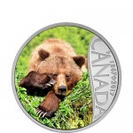 2017-1-2-oz-proof-canadian-silver-celebrating-canada-150th-series-grizzly-bear-rev-feat