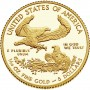 2017-w-1-10-oz-proof-american-gold-eagle-rev