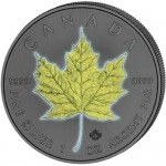2017-canadian-silver-maple-leave-out-of-dark-four-seasons-coin-set-1